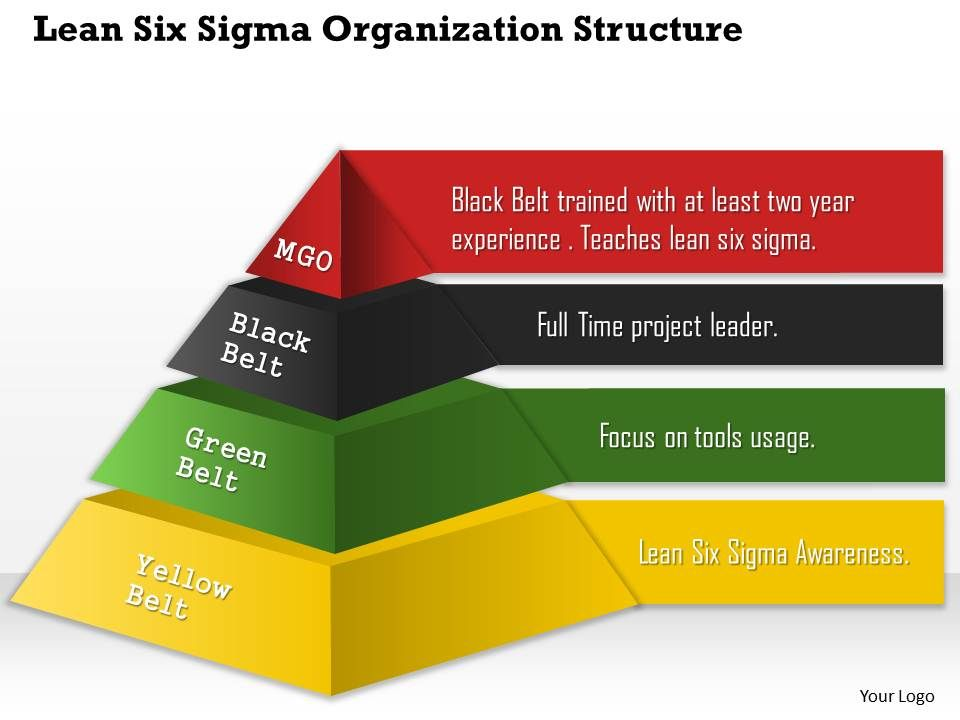 0514 Lean Six Sigma Organization Structure Powerpoint