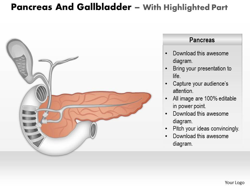 0514 pancreas and gallbladder medical images for powerpoint 0514pancreasandgallbladdermedicalimagesforpowerpointslide05 0514pancreasandgallbladdermedicalimagesforpowerpointslide06 toneelgroepblik Gallery