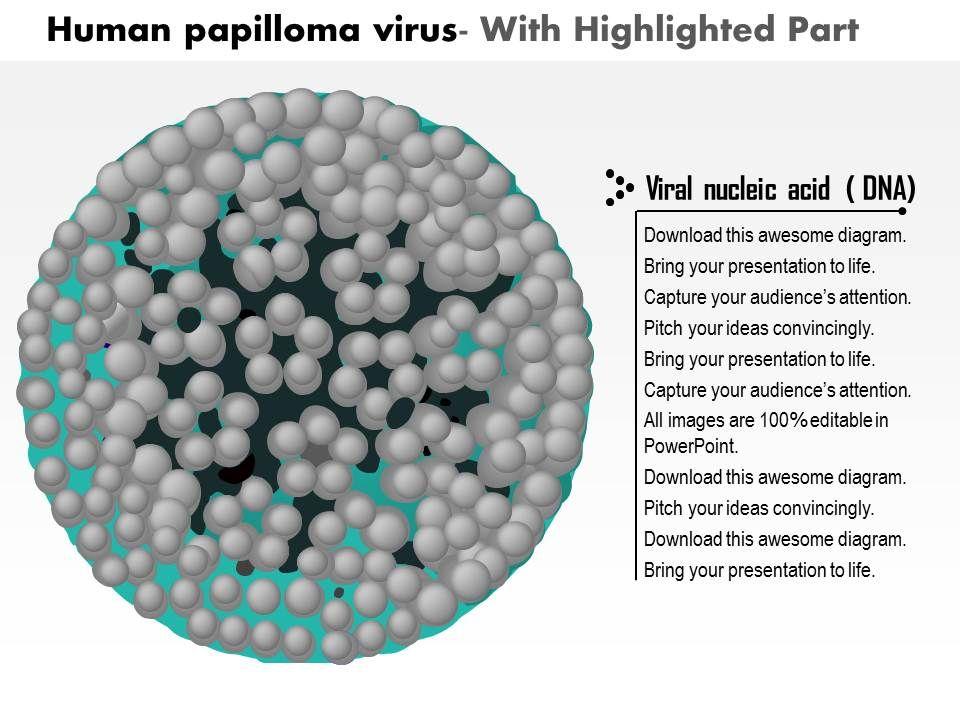 0614 Human Papilloma Virus Medical Images For Powerpoint Slide04 Slide05