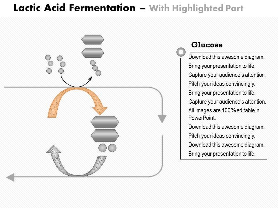 Lactic Acid Fermentation Diagram