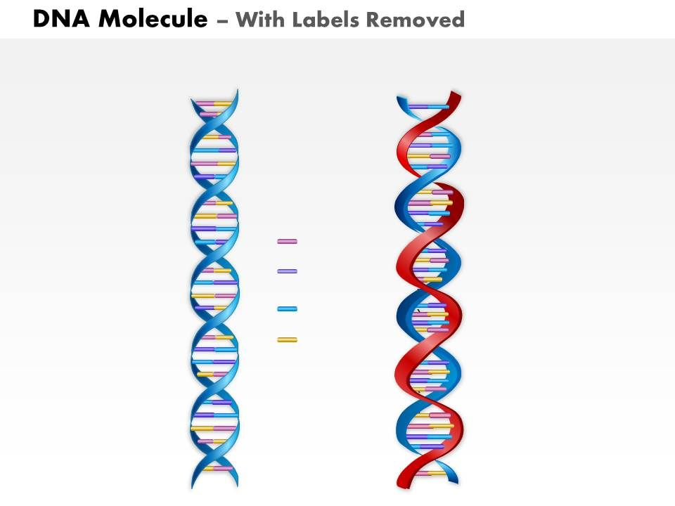 0814 Dna Molecule Medical Images For Powerpoint Powerpoint Slide Templates Download Ppt Background Template Presentation Slides Images