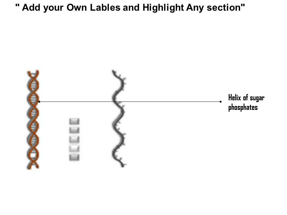 0814 Structure Dna And Rna Molecule Medical Images For Powerpoint Powerpoint Presentation Slides Ppt Slides Graphics Sample Ppt Files Template Slide