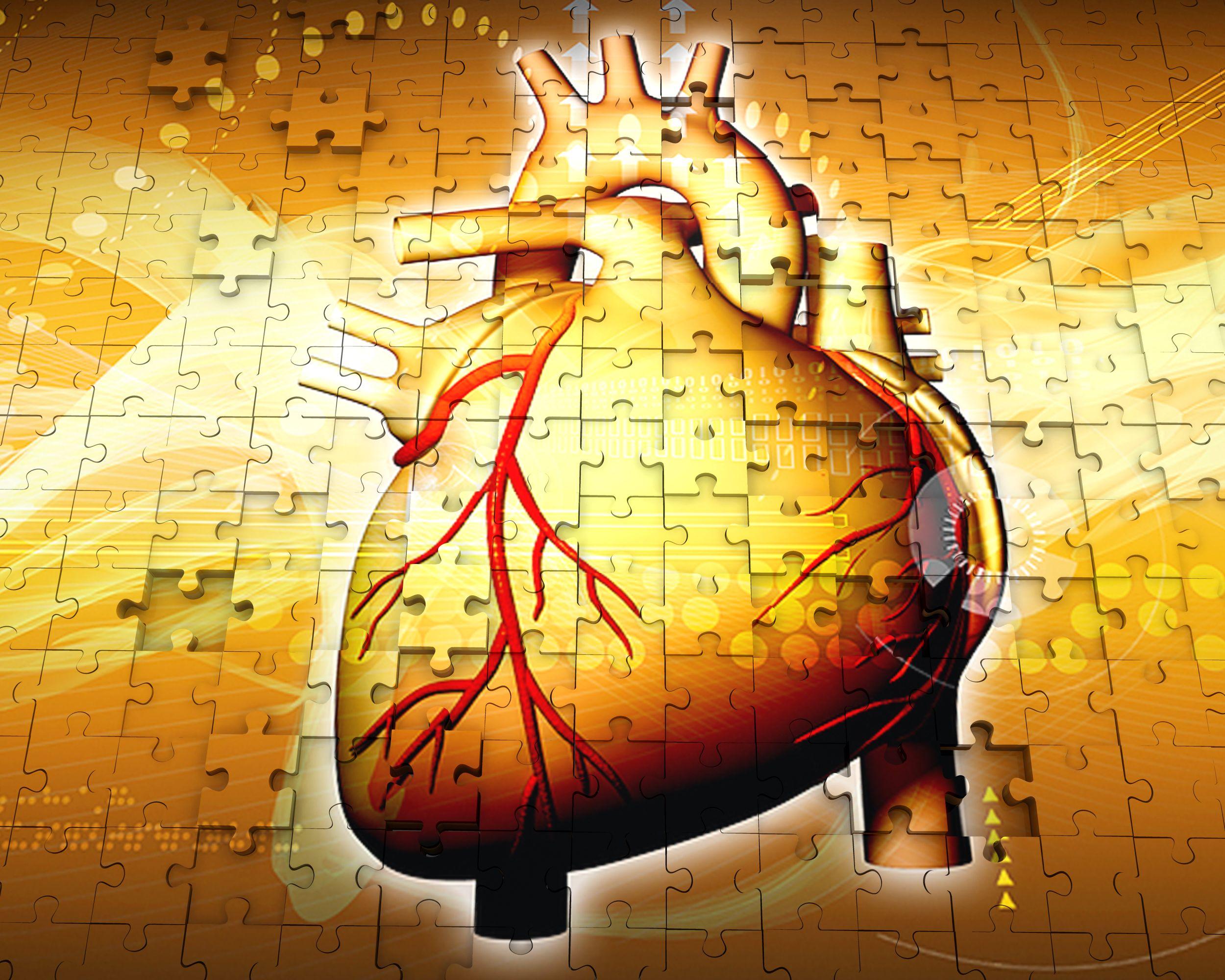 1114_anatomy_of_human_heart_on_puzzle_background_stock_photo_Slide01