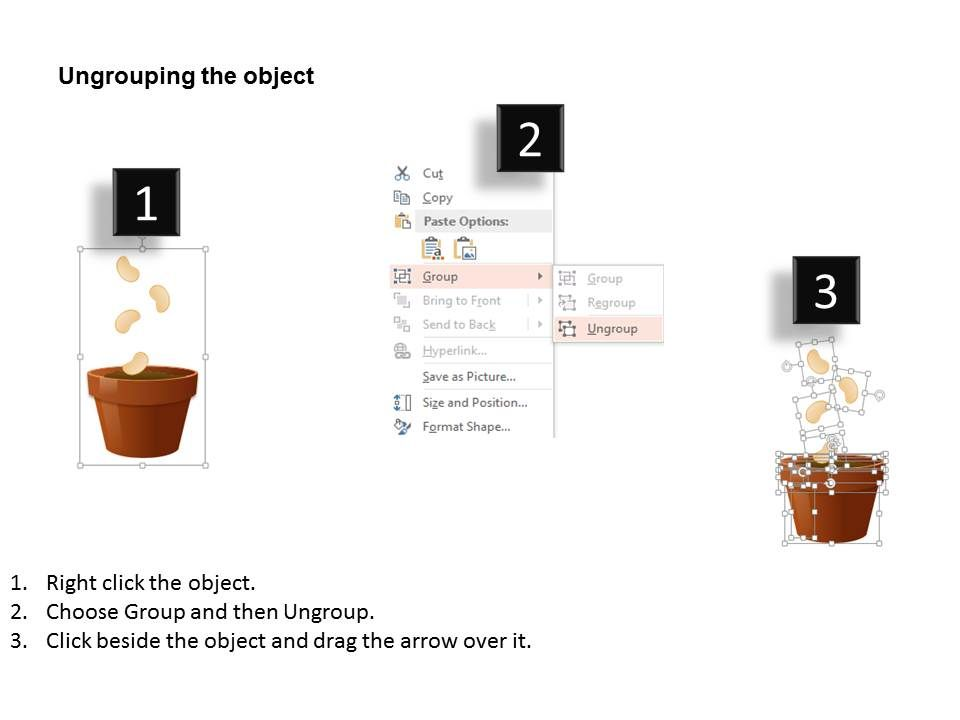 1114_process_flow_with_plant_and_pot_diagram_powerpoint_template_slide03   1114_process_flow_with_plant_and_pot_diagram_powerpoint_template_slide04