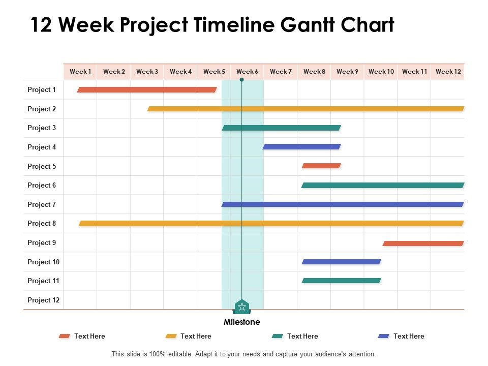 12 Week Project Timeline Gantt Chart Ppt Powerpoint Presentation Show Inspiration