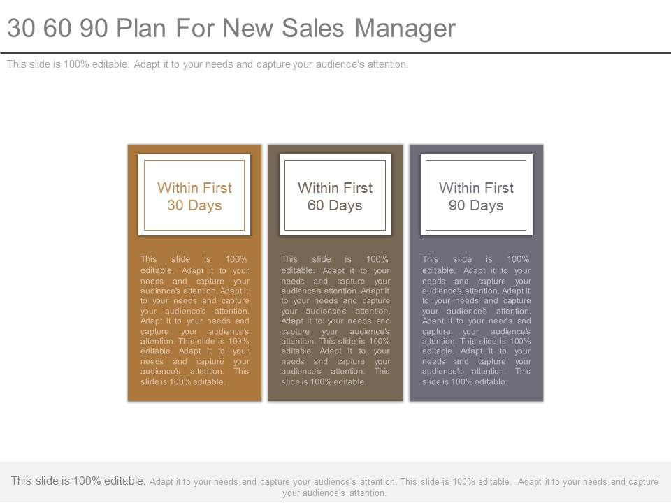 30 60 90 plan for sales managers