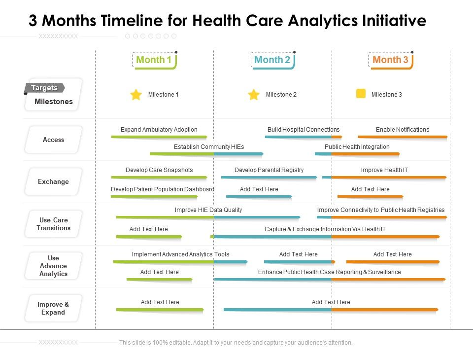 3 Months Timeline For Health Care Analytics Initiative