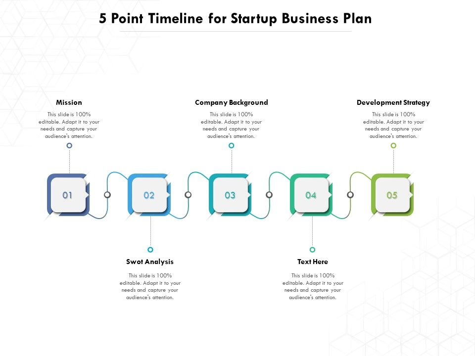 5 Point Timeline For Startup Business Plan