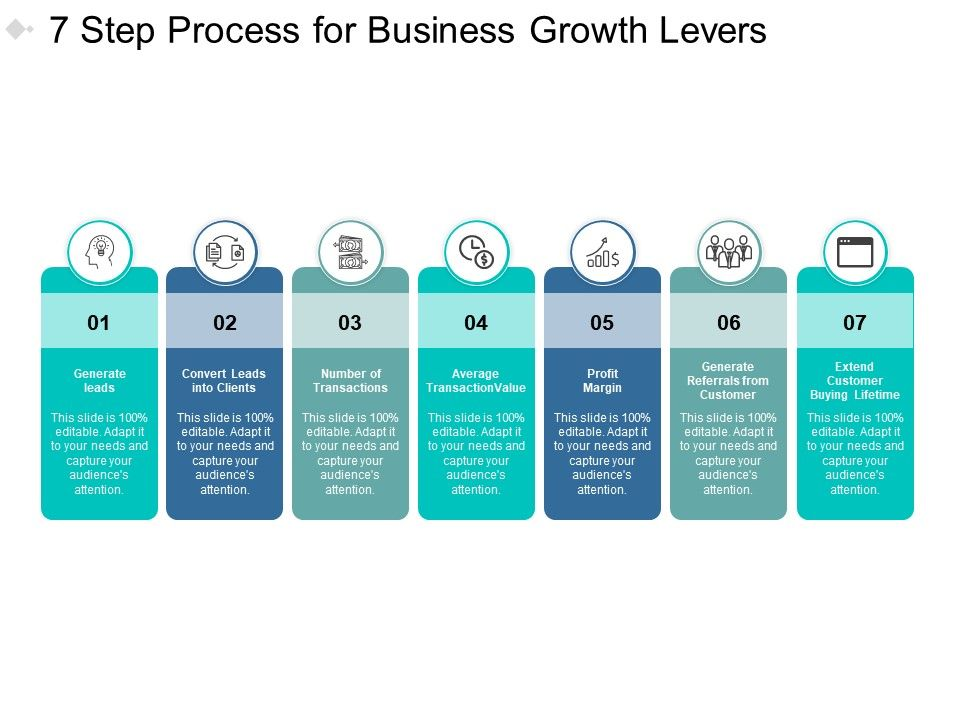 7 Step Process For Business Growth Levers