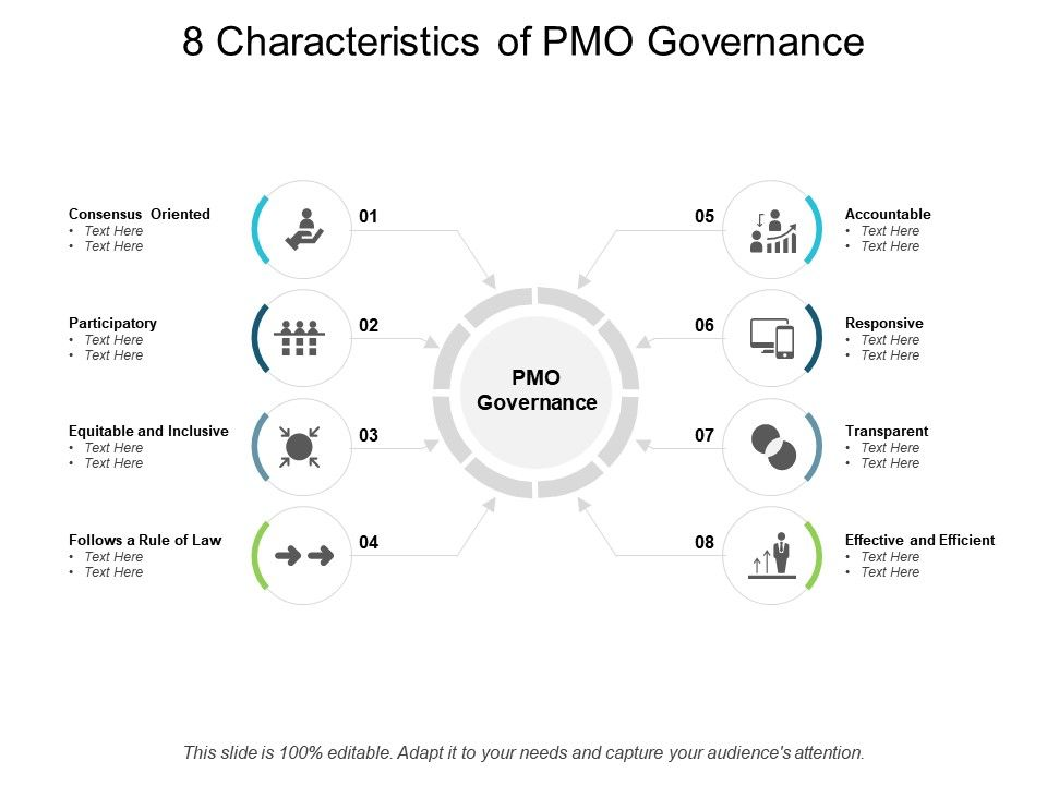 8 Characteristics Of PMO Governance