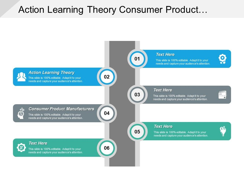 action learning theory consumer product manufacturers