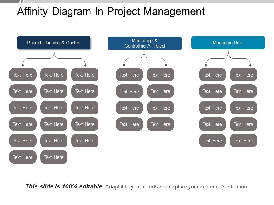 Affinity Diagram In Project Management Ppt Example File ... on