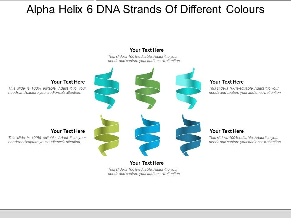 Alpha Helix 6 Dna Strands Of Different Colours | PowerPoint