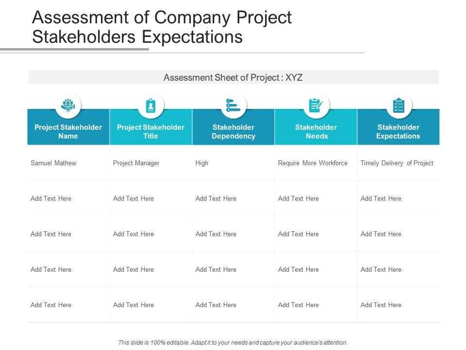 Assessment Of Company Project Stakeholders Expectations