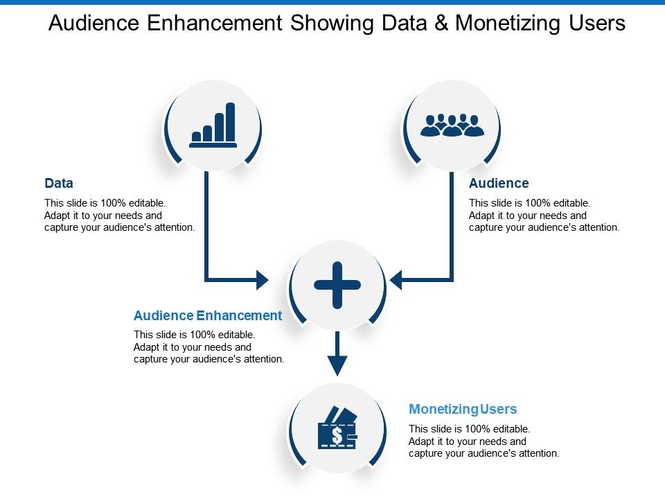 audience_enhancement_showing_data_and_monetizing_users_Slide01