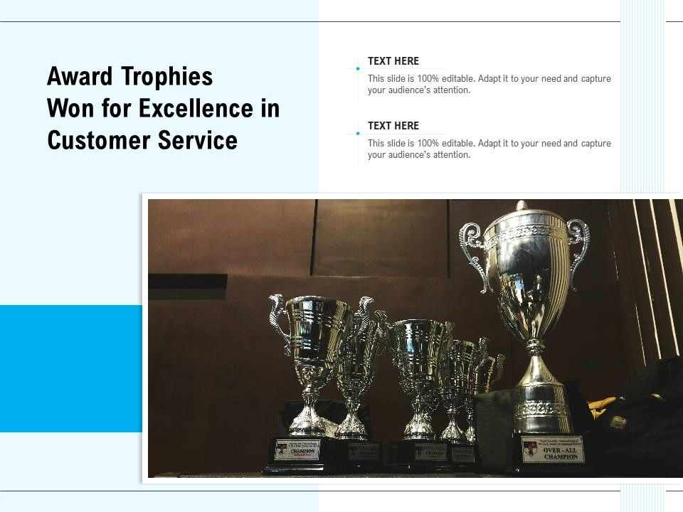 Award Trophies Won For Excellence In Customer Service