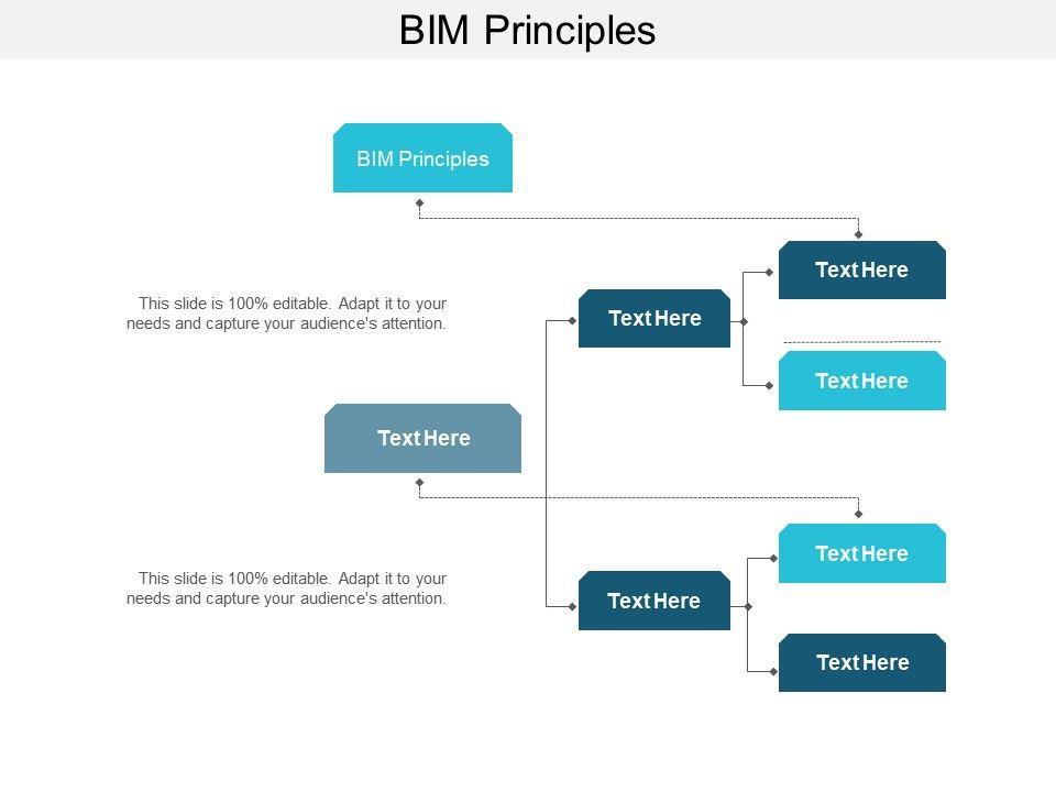 Bim Principles Ppt Powerpoint Presentation Layouts Example