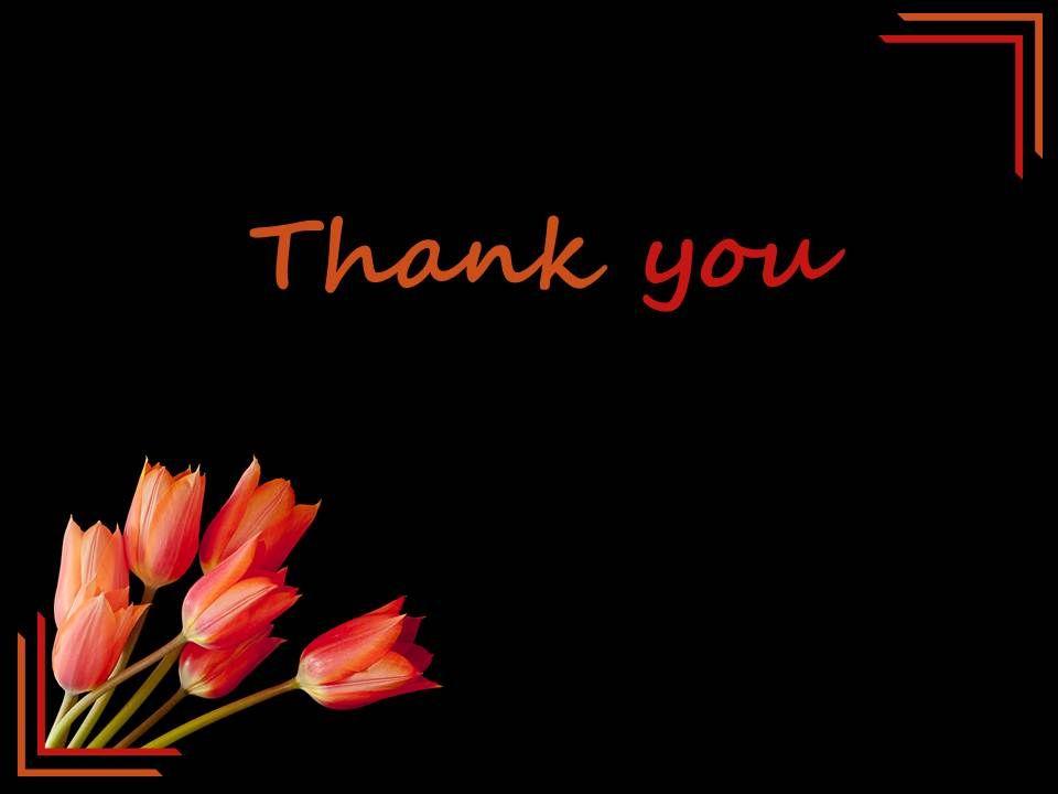Black background lily flower thank you card powerpoint slides blackbackgroundlilyflowerthankyoucardpowerpointslidesslide01 blackbackgroundlilyflowerthankyoucardpowerpointslidesslide02 toneelgroepblik Choice Image