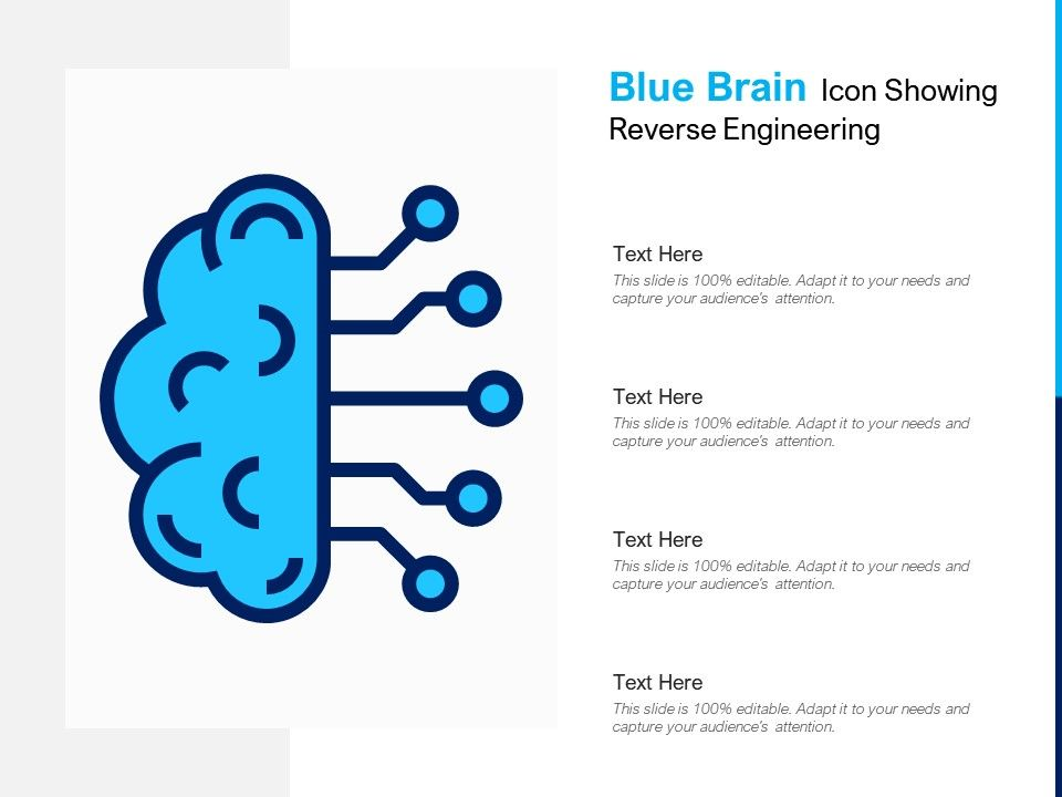 Blue Brain Icon Showing Reverse Engineering