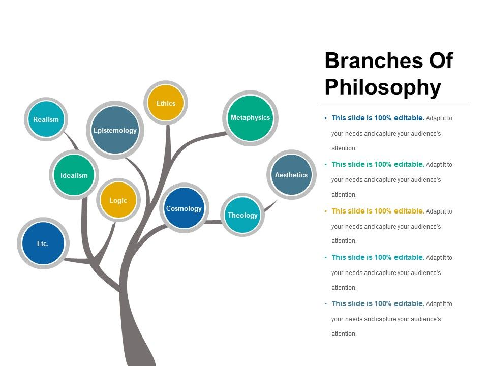Branches Of Philosophy Example Of Ppt | Templates PowerPoint