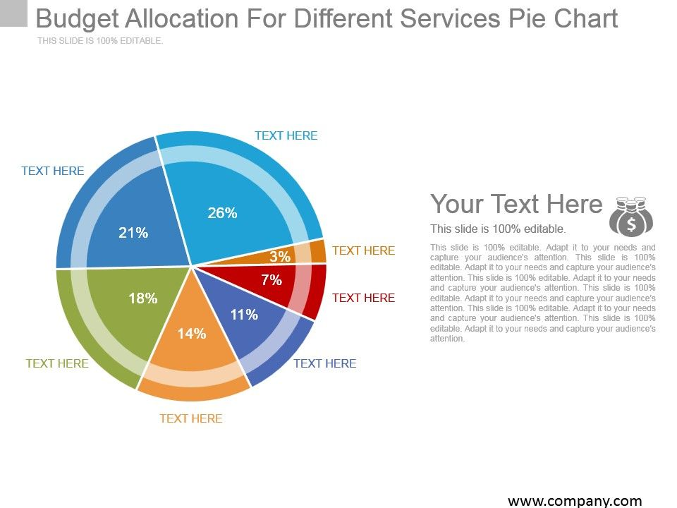 Budget Allocation For Different Services Pie Chart Example Of Ppt