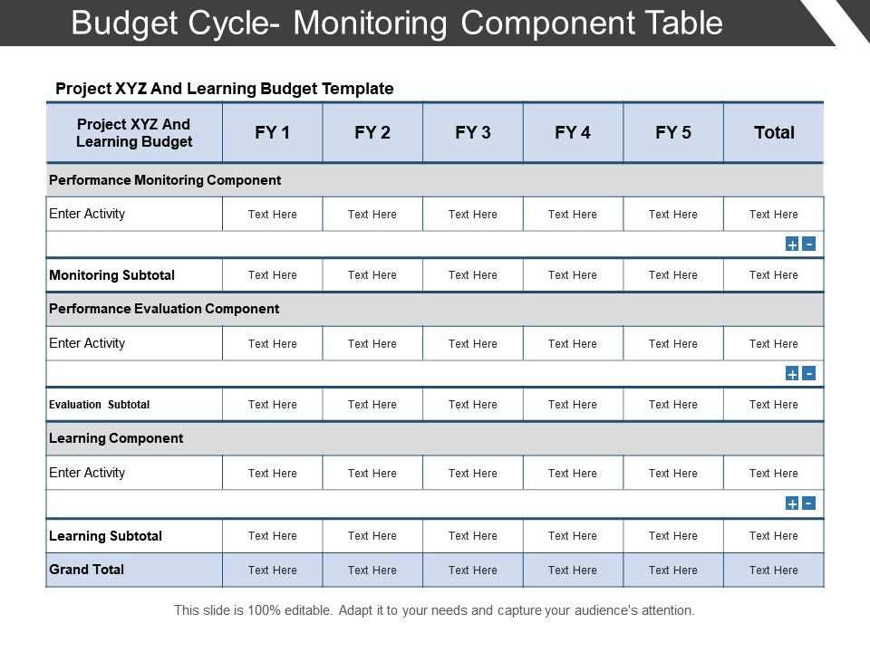 budget_cycle_monitoring_component_table_Slide01