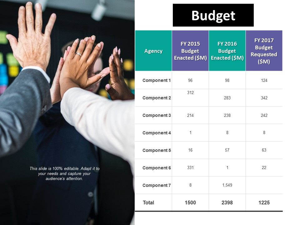Budget Ppt Summary Example Introduction | PowerPoint Slide Template