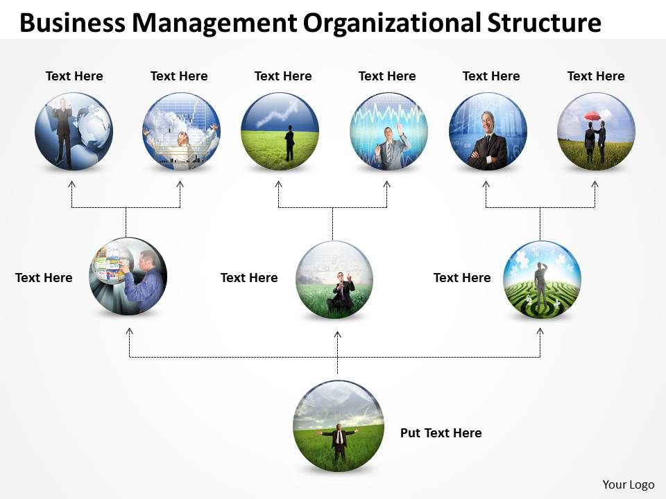 organizational structure ppt template