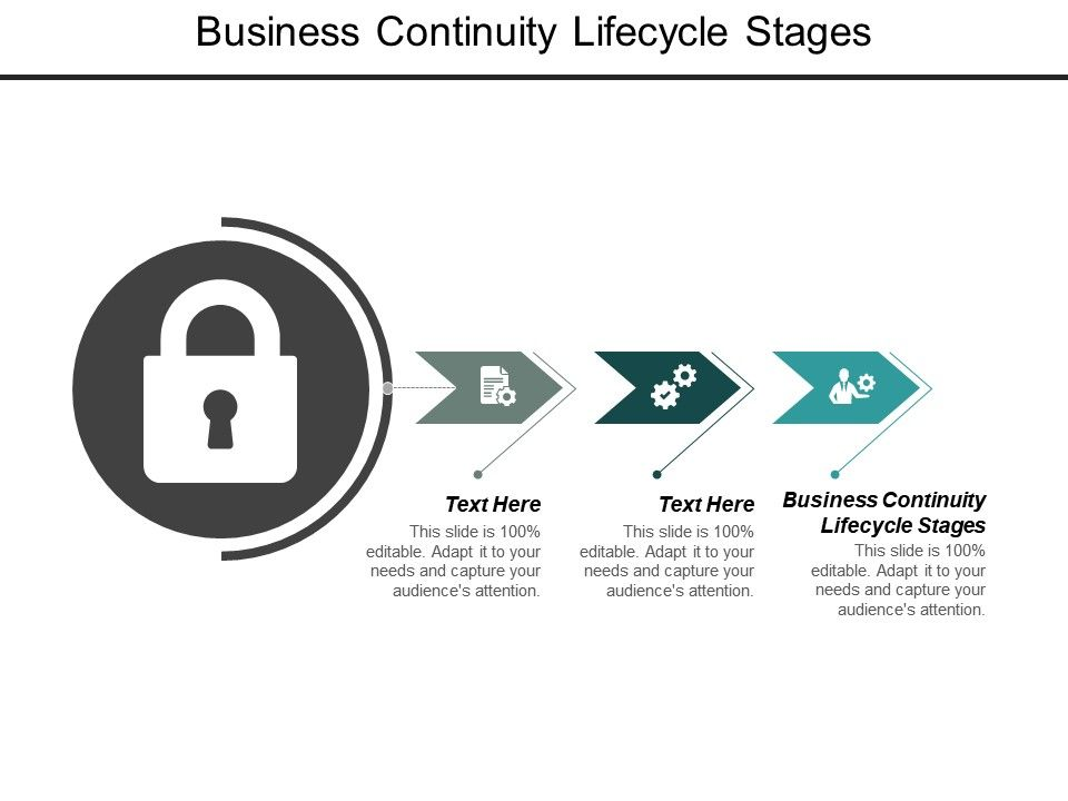 Business Continuity Lifecycle Stages Ppt Powerpoint