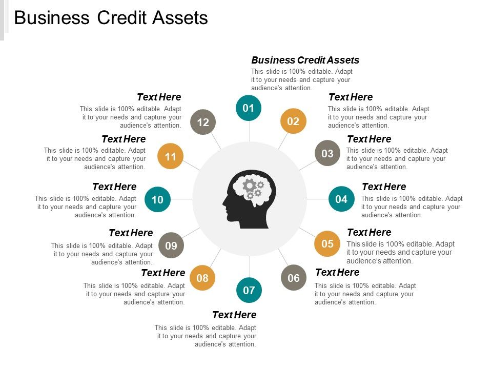 business_credit_assets_ppt_powerpoint_presentation_gallery_pictures_cpb_Slide01