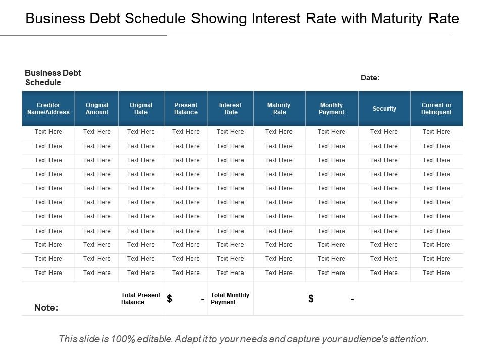 business debt schedule showing interest rate with maturity. Black Bedroom Furniture Sets. Home Design Ideas