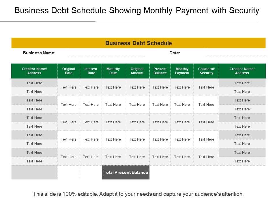 business debt schedule showing monthly payment with. Black Bedroom Furniture Sets. Home Design Ideas