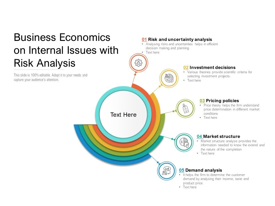 Business Economics On Internal Issues With Risk Analysis