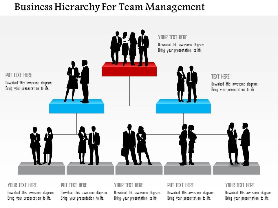 Business hierarchy for team management powerpoint templates businesshierarchyforteammanagementpowerpointtemplatesslide01 businesshierarchyforteammanagementpowerpointtemplatesslide02 flashek Images