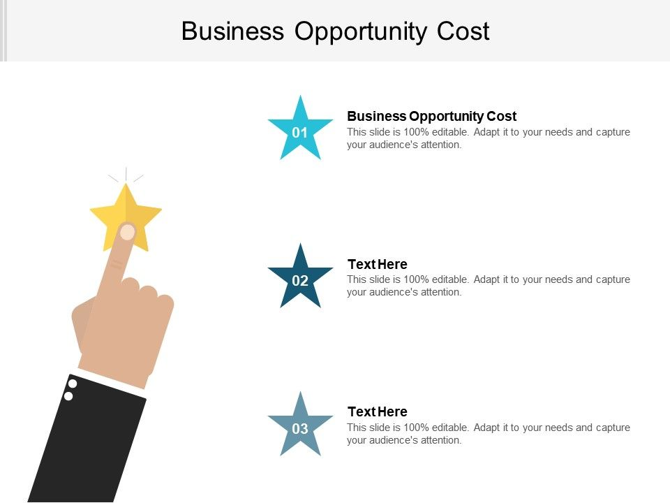 Business Opportunity Cost Ppt Powerpoint Presentation File Layouts Cpb