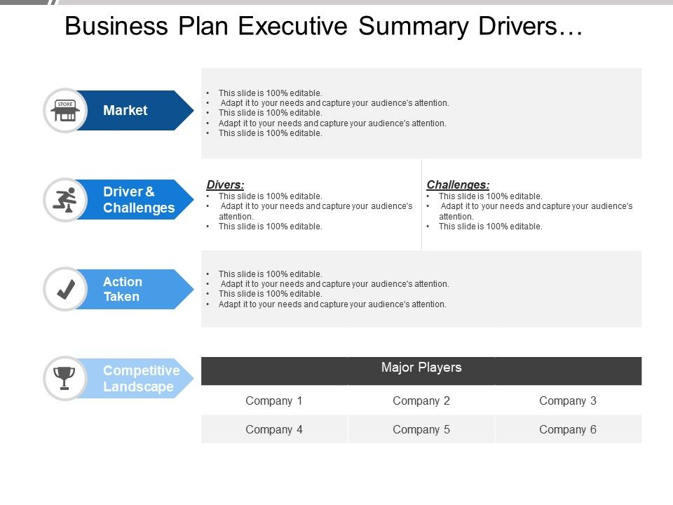 Business Plan Executive Summary Drivers Challenges