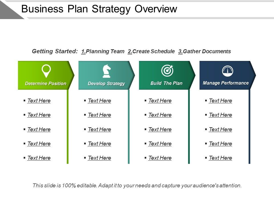 Business Plan Strategy Overview Presentation Examples