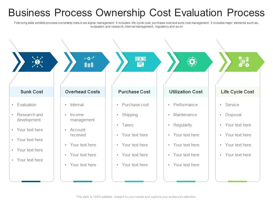 Business Process Ownership Cost Evaluation Process