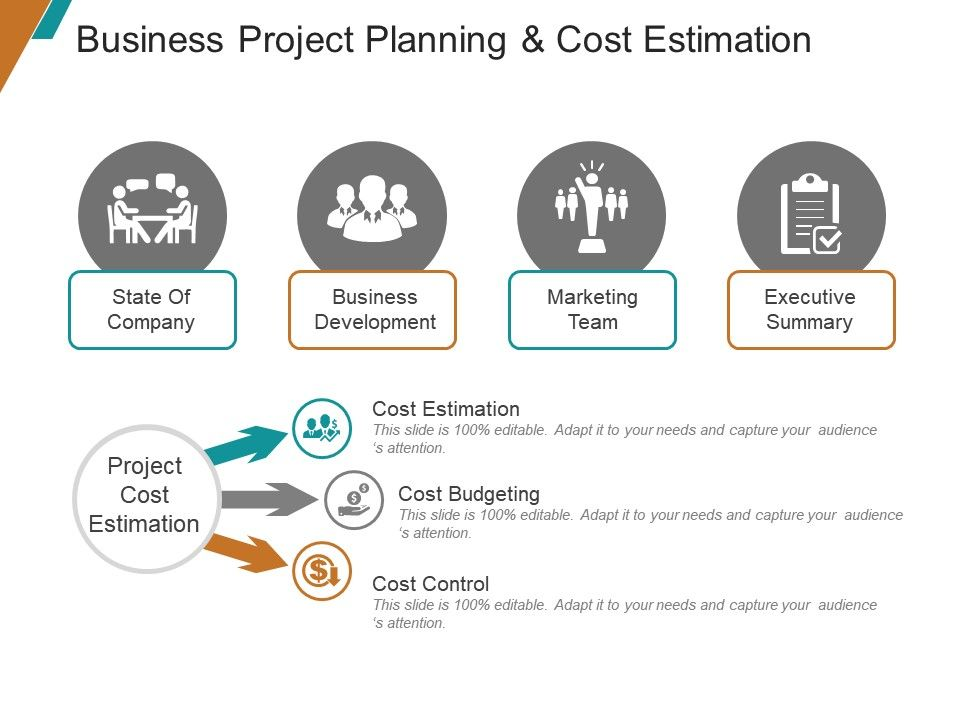 Business Project Planning And Cost Estimation Ppt Samples