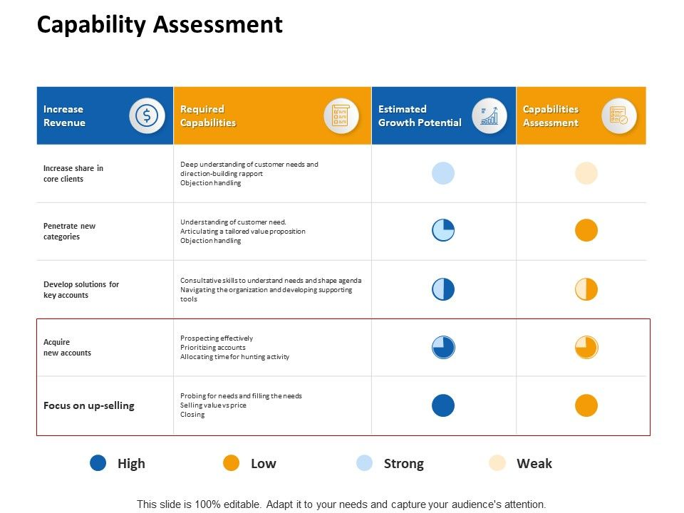 Capability Assessment Revenue Ppt Powerpoint Presentation Styles