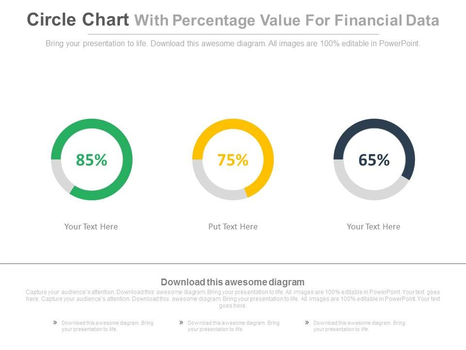 Circle Chart With Percentage Values For Financial Data