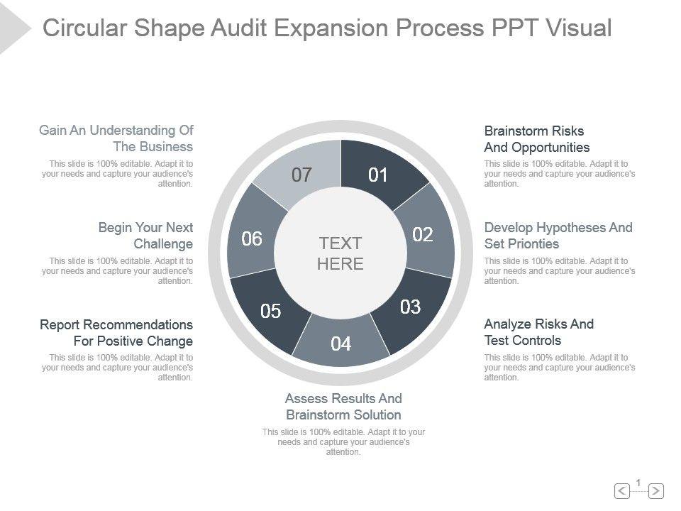 circular_shape_audit_expansion_process_ppt_visual_Slide01