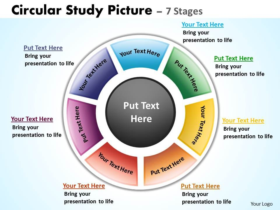 circular_study_picture_7_stages_4_Slide01