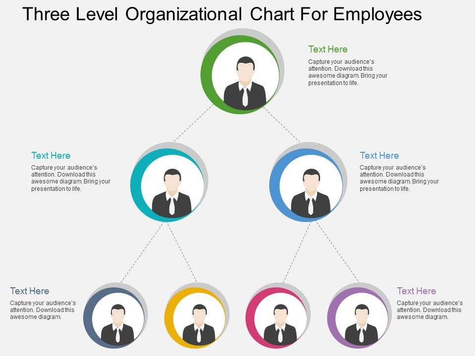 cj Three Level Organizational Chart For Employees Flat Powerpoint ...