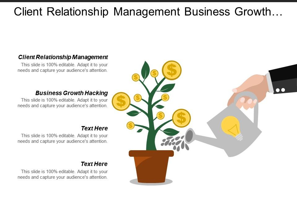 client_relationship_management_business_growth_hacking_organisation_structure_Slide01