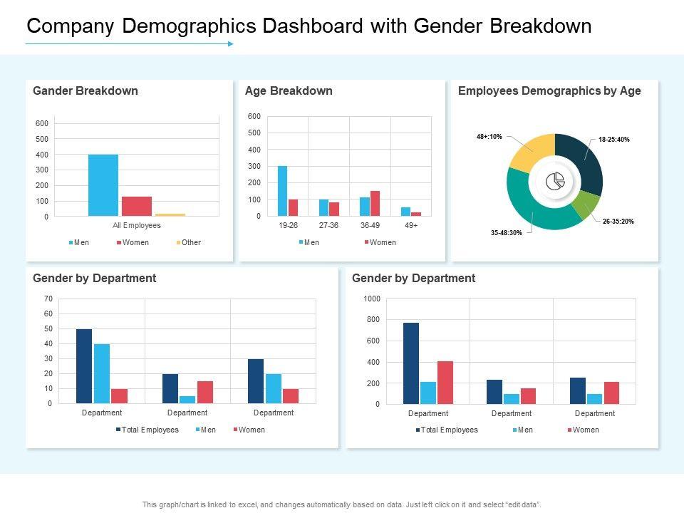 Company Demographics Dashboard With Gender Breakdown