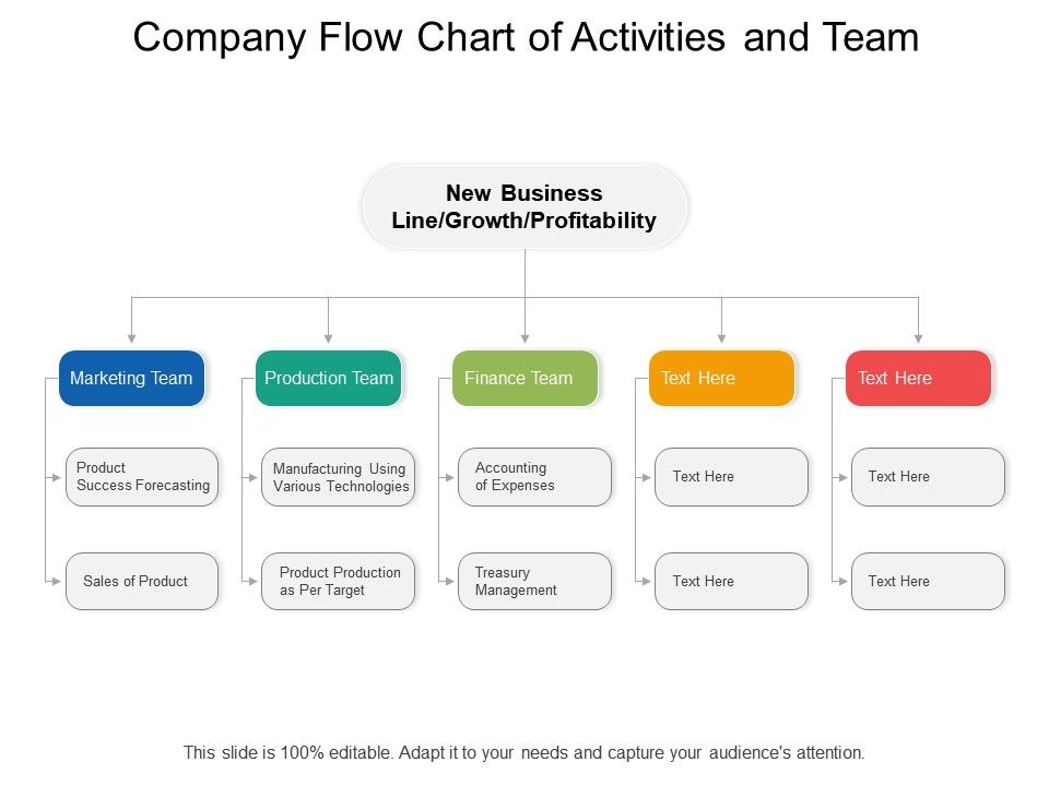 Company Flow Chart Of Activities And Team | Presentation