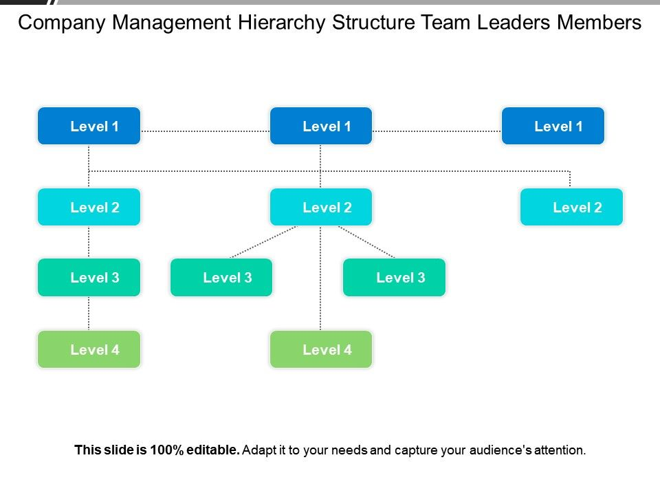 company_management_hierarchy_structure_team_leaders_members_Slide01