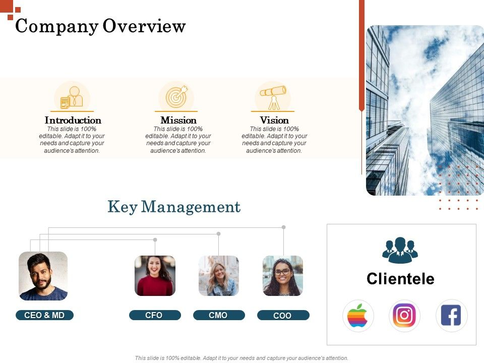 Company Overview Inorganic Growth Management Ppt Infographics