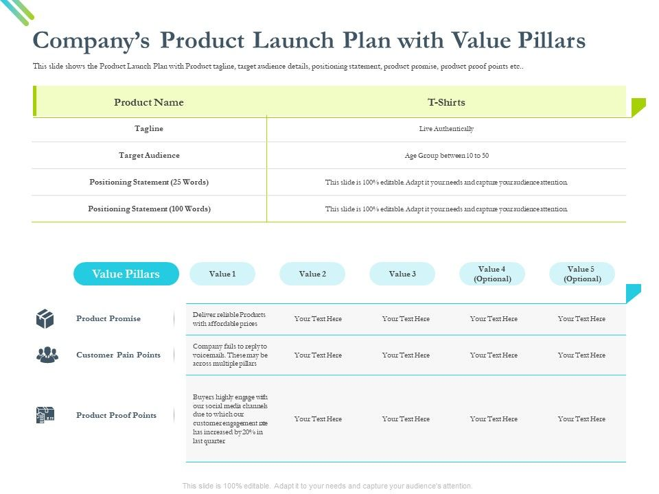 Companys Product Launch Plan With Value Pillars Fails Ppt Powerpoint Presentation Gallery Tips